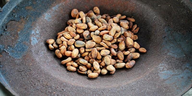 1024px-CacaobeansUntoasted