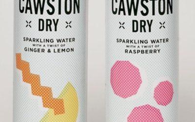 CAWSTON DRY Lemon & Ginger, Raspberry 250ml (1)