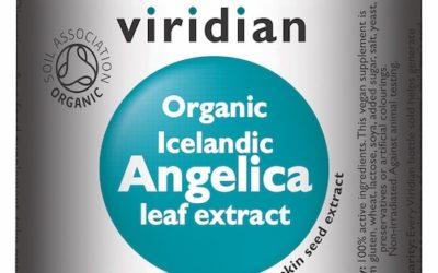 Icelandic Angelica LeafExtract