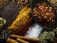 Cumin, Paprika, Cardamon, Cinnamon, Mustard Seed, Corriander Seed, Tumeric, Salt, Pepper, Fennel, Cloves and Chilli.