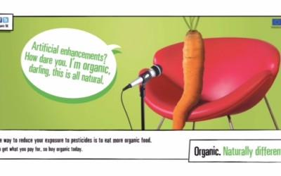 New creative execution2 - Carrot