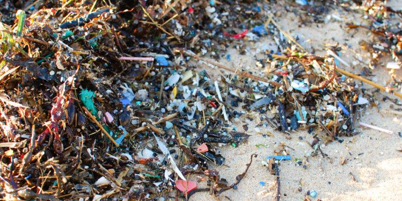 Plastic_Pieces_ credit Natasha Ewins