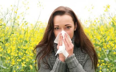 allergysneeze