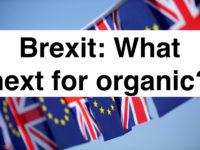 brexit_0
