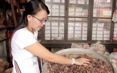 TCM shop, China