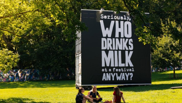 who drinks milk at festivals anyway