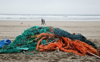 04 Ghost gear cleared from a beach in Cornwall 1015652(1)