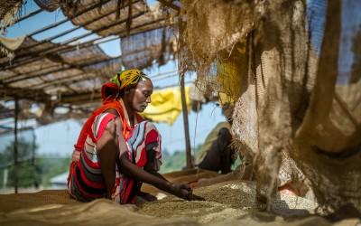 Fairtrade_2016_Ethiopia-1777