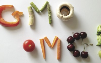 GMO OMG copy[1]