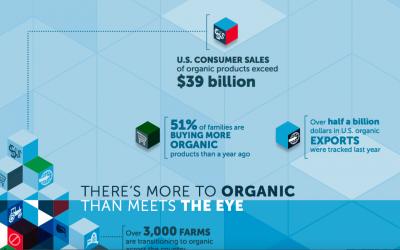 OTA US organic infographic
